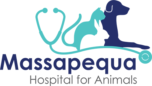 Massapequa Hospital for Animals